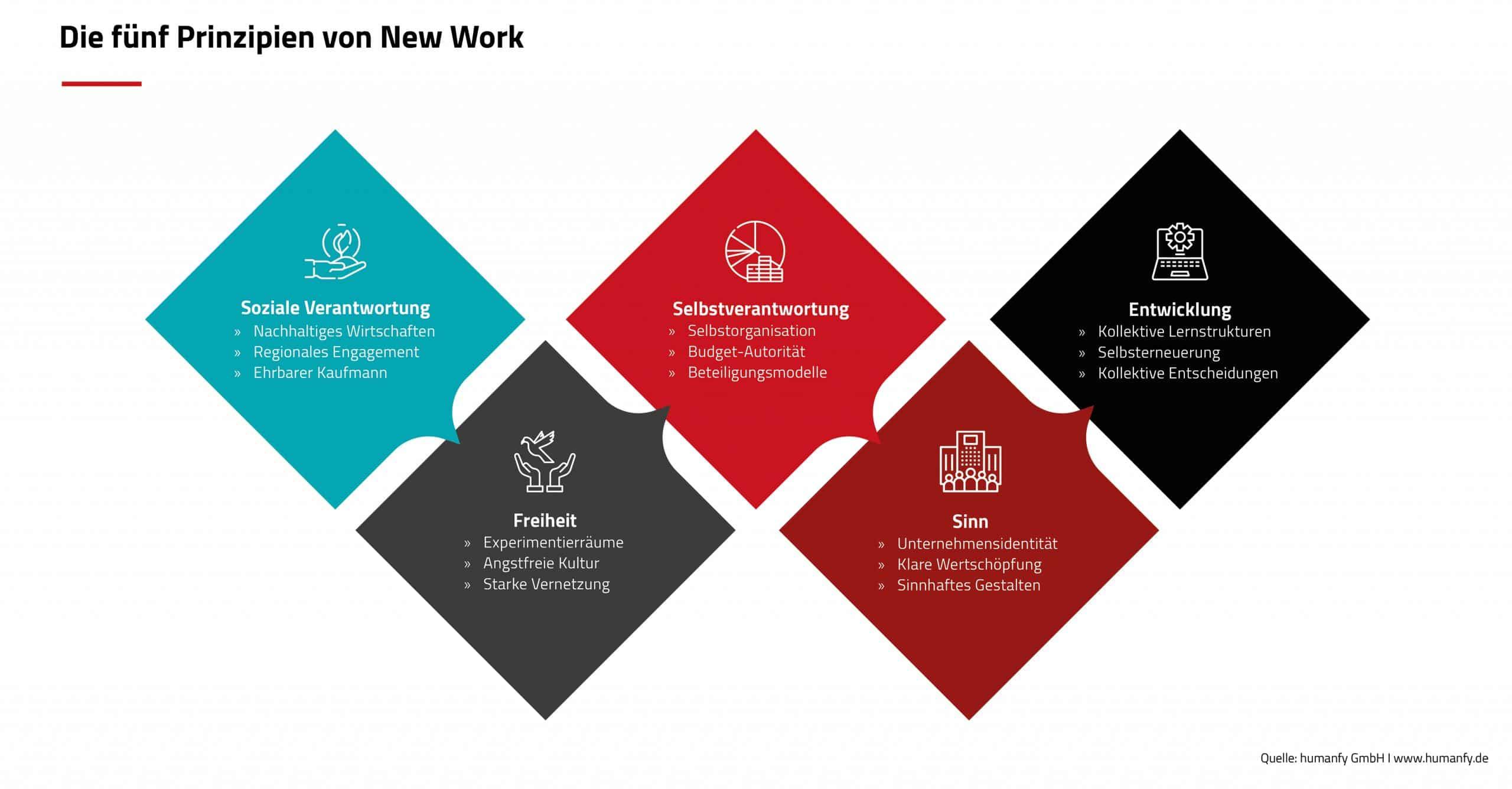 Humanfy fünf Prinzipien von New York