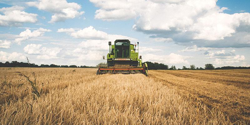 Vorschaubild Referenz Landwirtschaftsverlag ahd